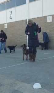 Honden training (103) 2